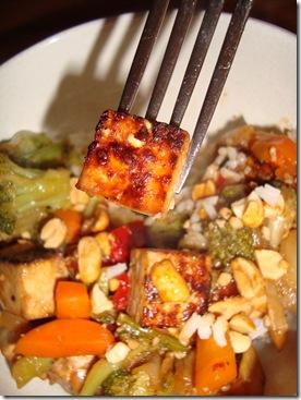 Tofu Stir Fry 028