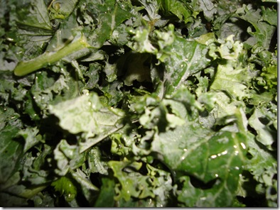 Kale Chips Fail 004