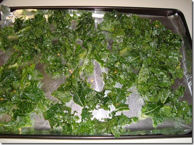 Kale Chips Fail 008