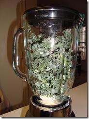 Kale Smoothie 006