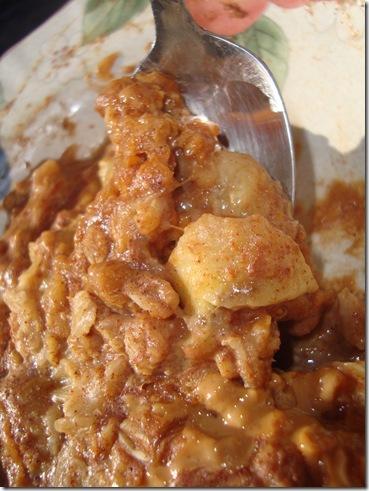 oatmeal 010
