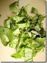 White Bean & Garlic Salad 011