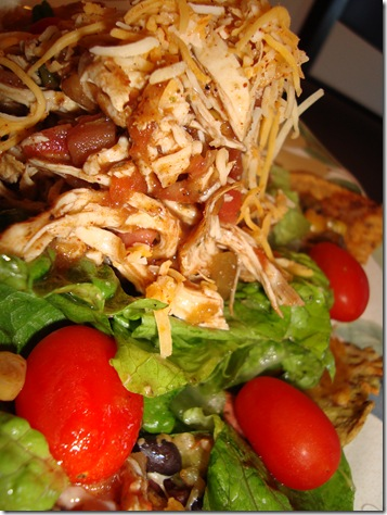 Nacho Salad 013