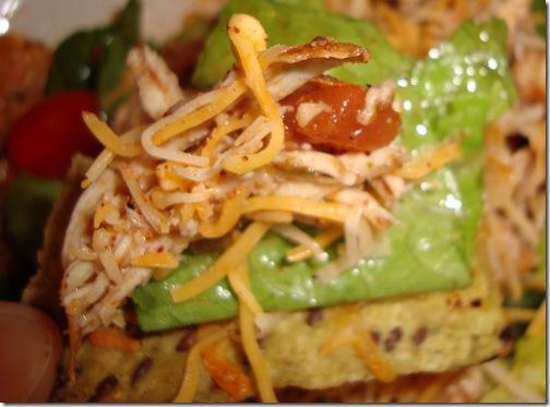 Nacho Salad 014