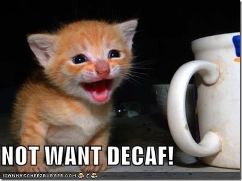 notwantdecaf