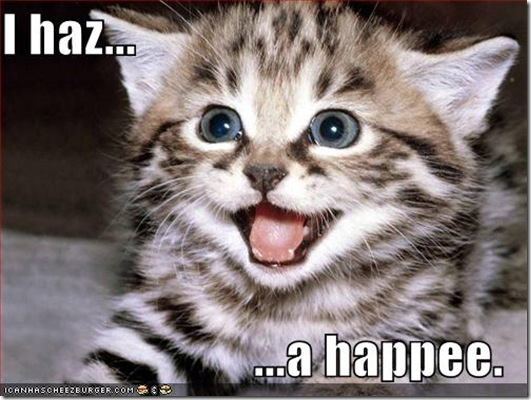 funny_pictures_kitten_has_a_happy_3-s500x375-149396-580