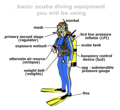 Scuba diving equipment is essential for a safe fun adventure