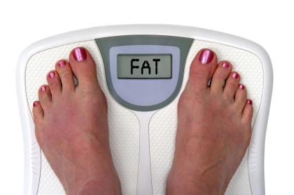 Fat scale2